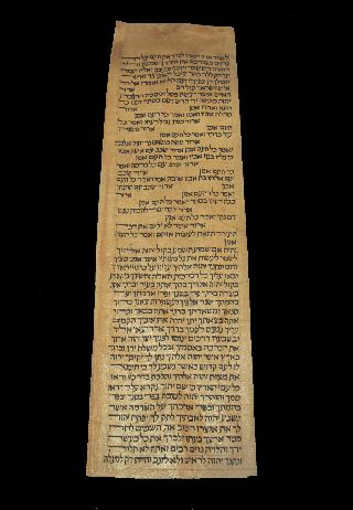 Torah Scroll Bible Vellum Manuscript Fragment Judaica 250 Yrs Algeria photo