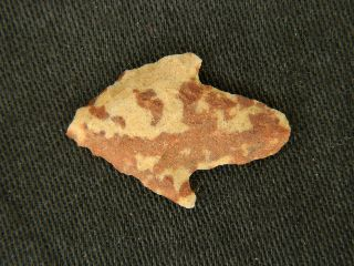 Neolithic Neolithique Felsite Arrowhead - 6500 To 2000 Before Present - Sahara photo