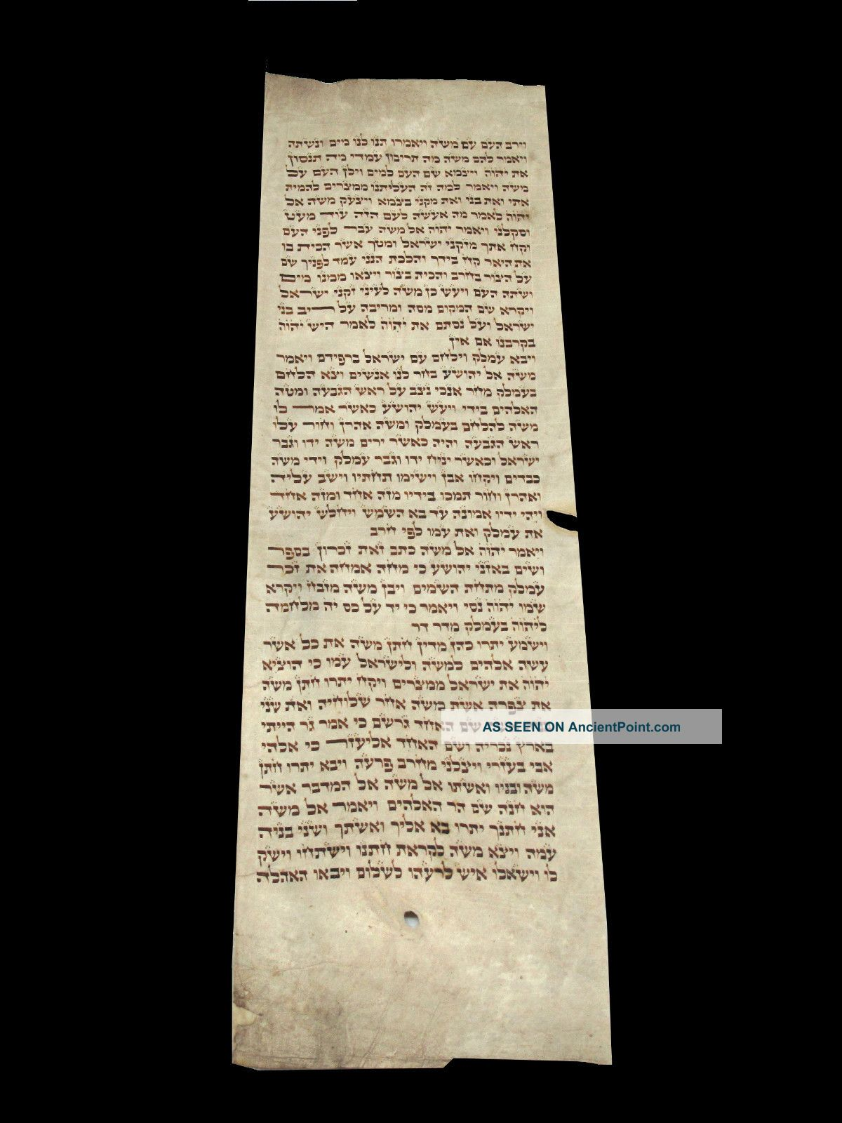 Torah Bible Handwritten Calf Skin Judaica 200 Yrs Old Europe Middle Eastern photo