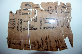Ancient Egyptian Papyrus Section 30th Dynasty photo