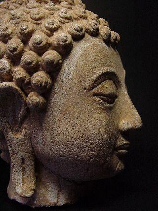 Rare Stucco Fragmented ' Sakyamuni ' Buddha Head ' Sukhothai ',  14 - 16th C. photo