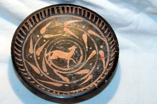 Ancient Greek Pottery Xenon Painted Horse Plate 4th Century Bc Equestrian photo