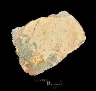 Ancient Roman Polychrome Painted Plaster Fresco Fragment 016432l photo