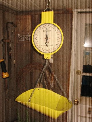 Vintage 1912 Country Store Hanging Scale,  60lb. ,  American Family Scale,  All Orig. photo