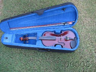 4/4 Rothenburg Violin Chocolate Finish Comes With Case And Bow New photo