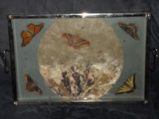 Deco/retro 1940 - 50 ' S Butterfly Serving Tray photo