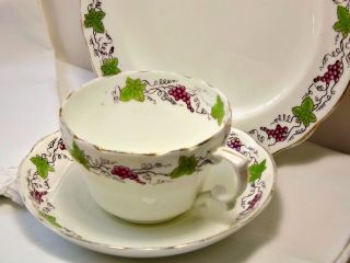 1910 H & Co L Grapes & Grapevine Tea Cup Trio~rd No 571260~haviland & Co Limoge? photo