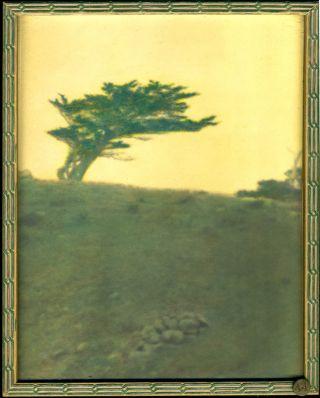 Cleora Clark Wheeler Mustard Sky Hand Tinted Photograph 1922 Minnesota Artist Nr photo