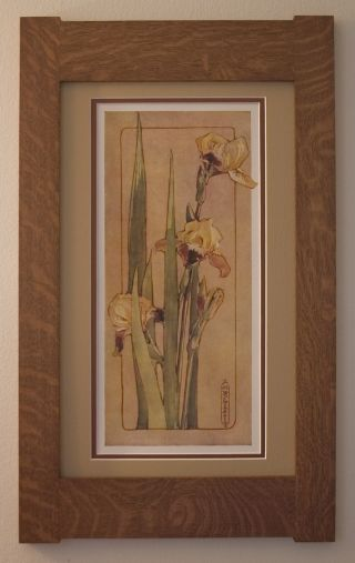 Mission Style Quartersawn Oak Arts & Crafts Framed Print - Yellow Iris photo
