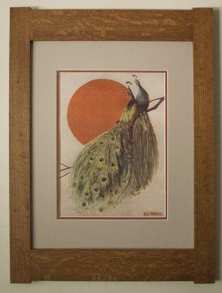 Mission Style Art Quartersawn Oak Arts & Crafts Framed Print - Peacocks photo