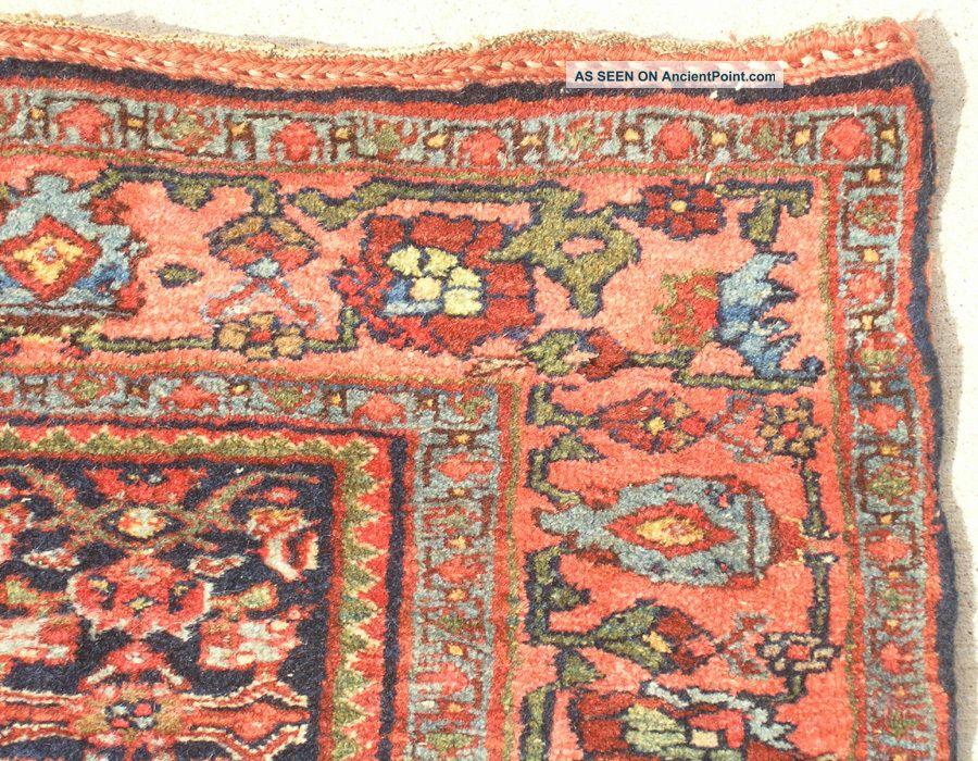 19th C Antique Persian All Wool Bidjar Halvaii Rug Carpet Tribal 49x68 Mint Cond Medium (4x6-6x9) photo