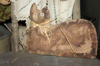 Primitive Cat photo