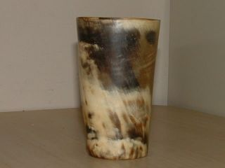 Antique Scottish Cow Horn Cup / Cider Beaker photo