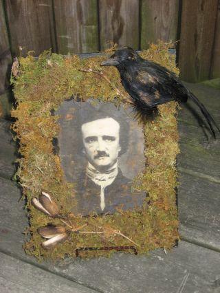 Primitive Grungy Gothic Mixed Media Edgar Allan Poe With Raven Crow photo
