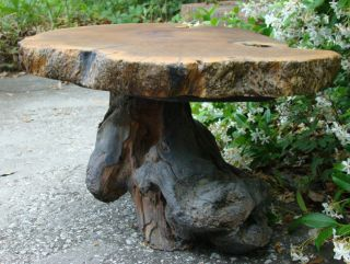 Vintage Handmade Rustic Cypress Tree Trunk Stump Root Accent Table Charleston Sc photo