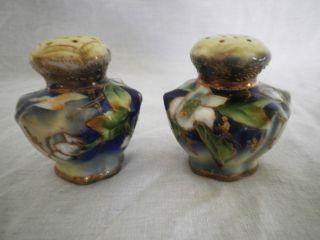 Antique Hand Painted Porcelain Salt & Pepper Shakers photo