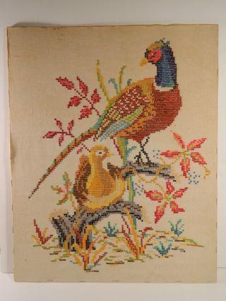 Pheasant~ Large Vintage Sampler On Linen~birds Cross Stitch Antique photo