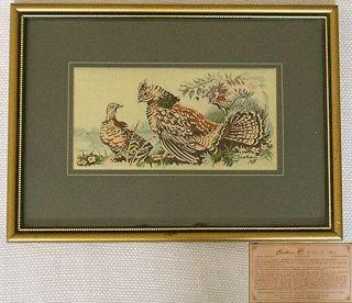 Vintage Cash's Woven Silk Picture,  Ruffed Grouse,  Framed,  Collector Series Birds photo