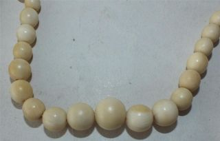 1920 ' S Quality Chinese Ox Bone Necklace Butterfly Clasp 61cm 24