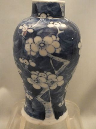 Chinese Porcelain Blue & White Prunus Vase 19thc photo