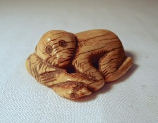 Vintage Antique Carved Netsuke Ox Bone Monkey photo