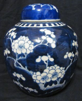 Large Antique Chinese Prunus Pattern Jar Vase photo