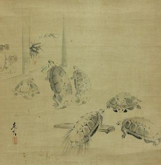 Jiku725 Ct Japan Scroll Shibata Zeshin Turtle photo