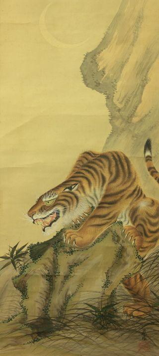Jiku1182 Rj Japan Scroll Tiger photo