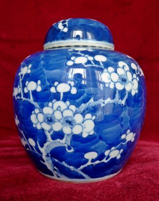 Chinese Blue & White Porcelain Prunus Ginger Jar,  Double Ring Mark photo