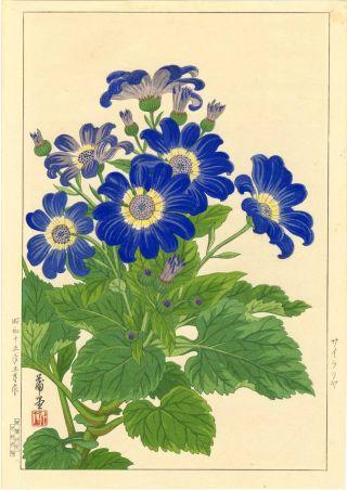 Nishimura Hodo Japanese Woodblock Print Zinnia 1930s 1938 photo