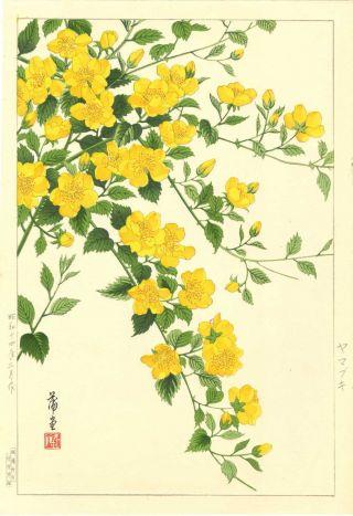 Nishimura Hodo Japanese Woodblock Print Azalea 1930s 1938 photo