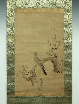 Wajin1145 Japan Hanging Scroll Kano Shoei Wild Duck photo