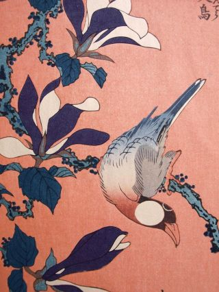 Hokusai Japanese Vintage Woodblock Print Java Sparrow On Magnolia Buncho Kobushi photo