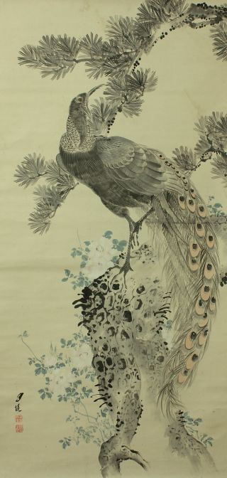 Jiku751 Jt Japan Scroll Cho Gessho Peacock photo