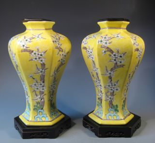 Pair China Chinese Porcelain Famille Jaune Vases W/ Blossom Decor 20th C. photo