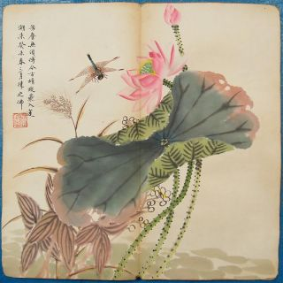 5945 Album Of Eight Chinese Paintings: Bird & Flowers photo
