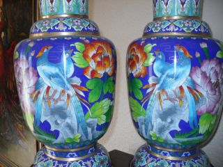 Chinese Antique Cloisonne Large Pair Of Vases - Phoenix/peony Intricate Design photo