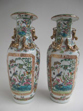 A Pair Of Antique Chinese Porcelain Canton Vase 19th Century photo