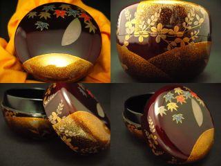 Japanese Lacquer Tea Caddy Flower Palace Fall Hira - Natsume By Kazuyuki photo