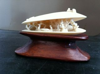Carving Of A Scene In A Mussel Shell - Faux Ivory Or Bone? photo