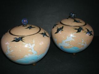 19thc Pair Of Japanese Cloisonne Enamel Lidded Pots,  Swallows And Sea Decoration photo