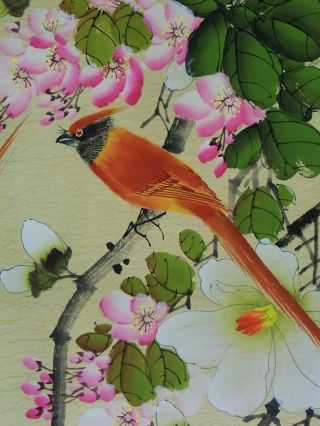Chinese Ink Painting Hanging Scroll Birds Hand Painted By Xie Zhiliu photo