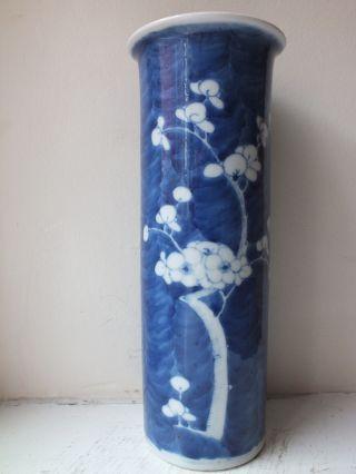 19th C Chinese Porcelain Blue And White Prunus Sleeve Vase photo