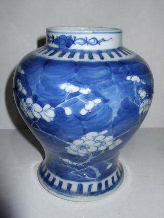 Antique Chinese Porcelain Vase ~ Prunus Blossom photo