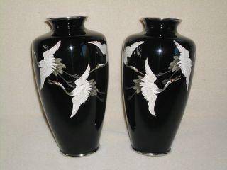 2 Vtg Black Japanese Sato Ginbari Enamel Cloisonne Vases Silver Rim Cranes Birds photo
