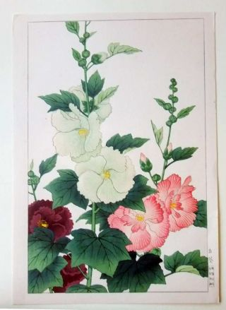 Japanese Woodblock Print Hodo Shin Hanga Flowers photo