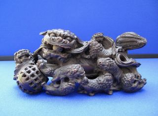C1500s Fine Antique Chinese Ming Dynasty Carved Zitan Wood Foo Lion With Pups photo