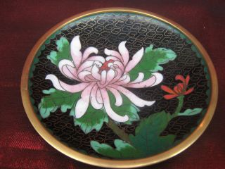 Small Cloisonne Dish photo