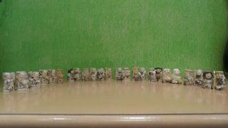 Ox Bone Bein Os Sculpture Okimono Chinese Netsuke 24 Pieces photo