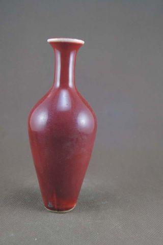 Chinese Monochrome Red Glazed Porcelain Vase photo